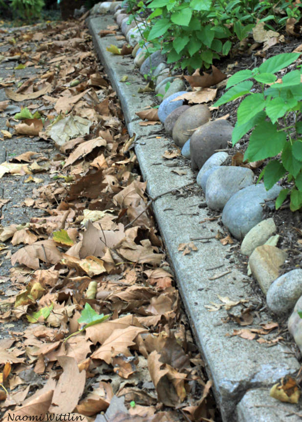 path of leaves and stones